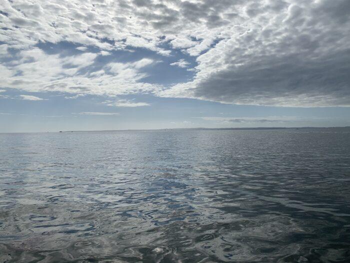 Wellington Point, QLD, Feb 2021 (16)