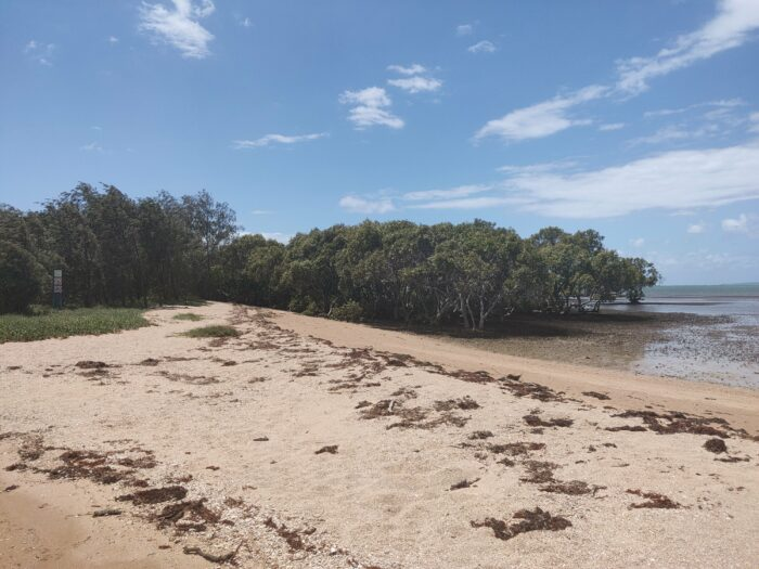 Wellington Point, QLD, Feb 2021 (9)
