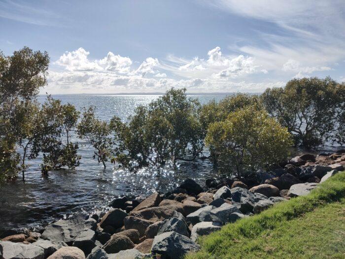 Wellington Point, QLD, Jan 2021 (13)