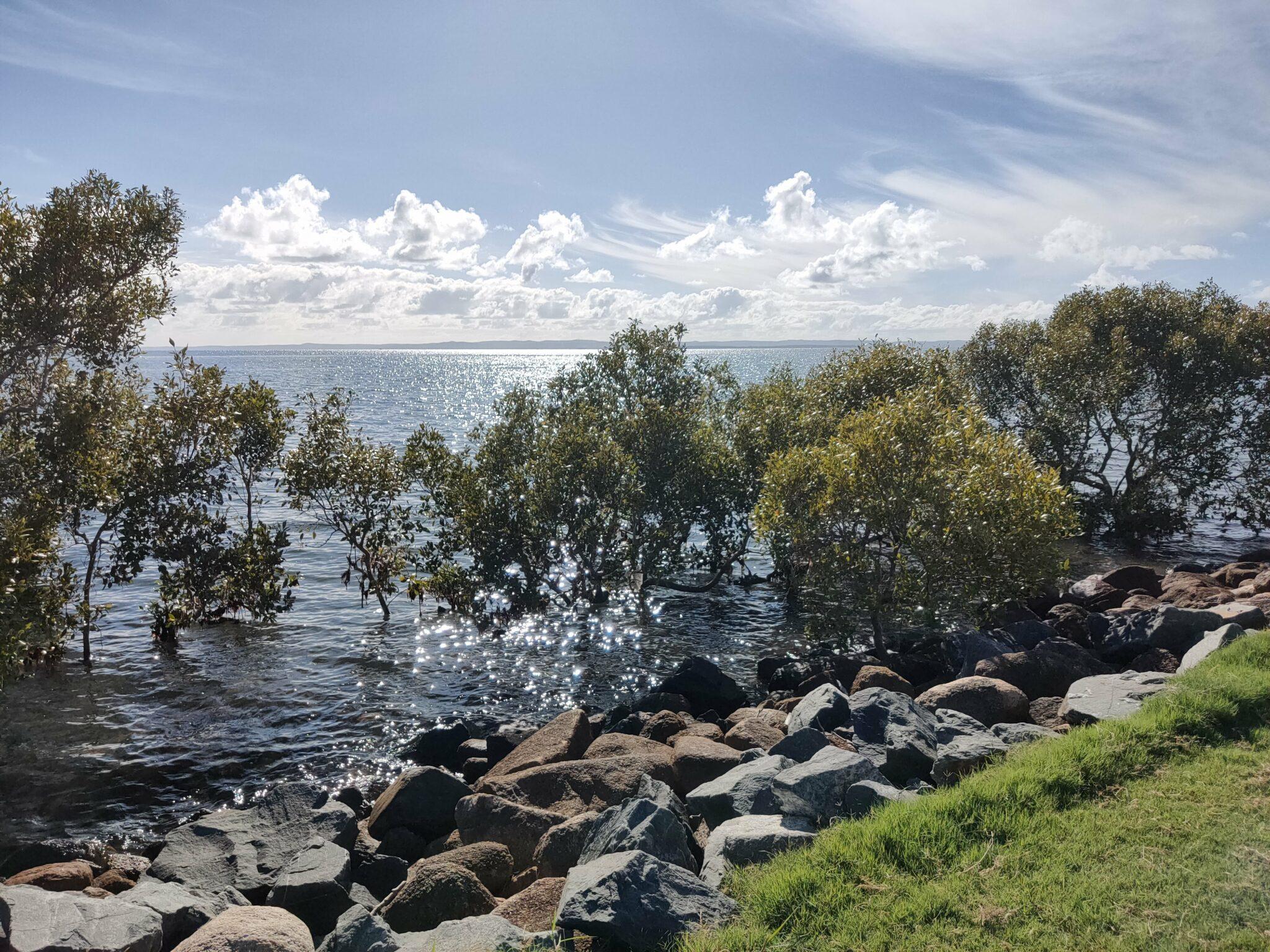 Wellington Point, QLD, Jan 2021
