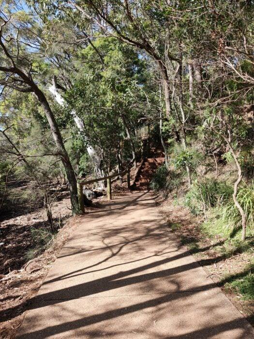 Wellington Point, QLD, Jan 2021 (15)
