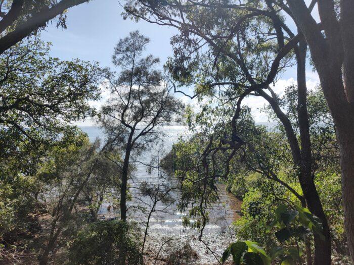 Wellington Point, QLD, Jan 2021 (18)