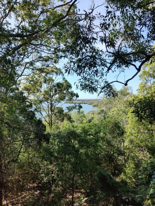 Wellington Point, QLD, Jan 2021 (19)