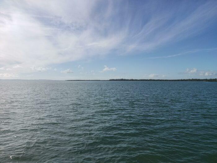 Wellington Point, QLD, Jan 2021 (2)