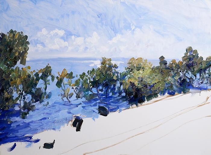 WIP Dan Scott, Wellington Point, Shimmering Light (7)