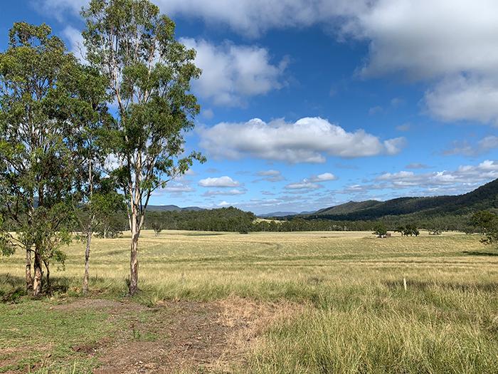 Dan Scott, Maryvale, Sunny Landscape, 2021 (Reference Photo)