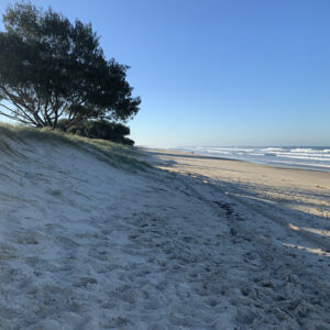 Gold Coast, Reference Photo (2)