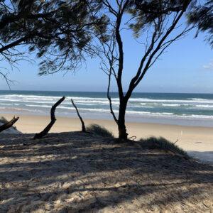Gold Coast, Reference Photo (4)
