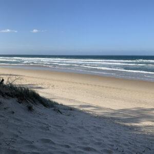 Gold Coast, Reference Photo (5)