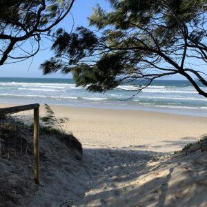 Gold Coast, Reference Photo (8)