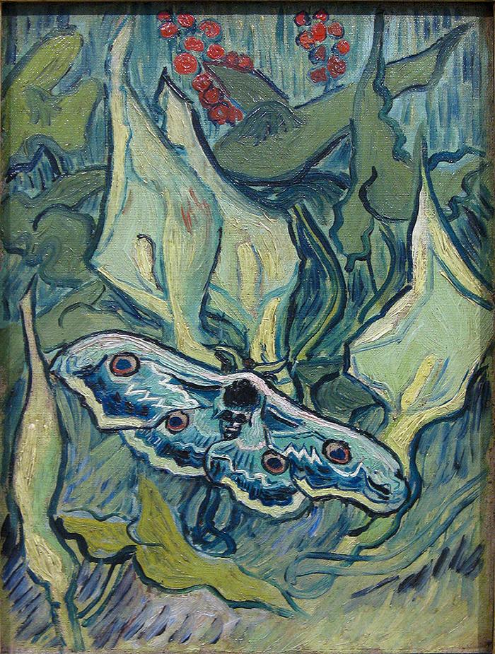 Vincent van Gogh, Nachtpauwoog, 1889