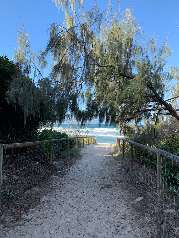 Dan Scott, Gold Coast, Path to the Sea, 2021, Reference Photo