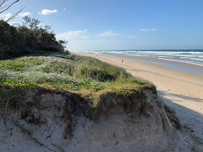 Reference Photo - Gold Coast, Sand Dune